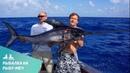 Рыба меч в Атлантическом Океане Вытащили за 40 минут