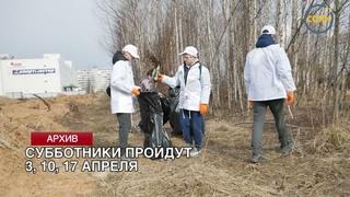 Четыре субботника проведут в г.о.Солнечногорск в апреле