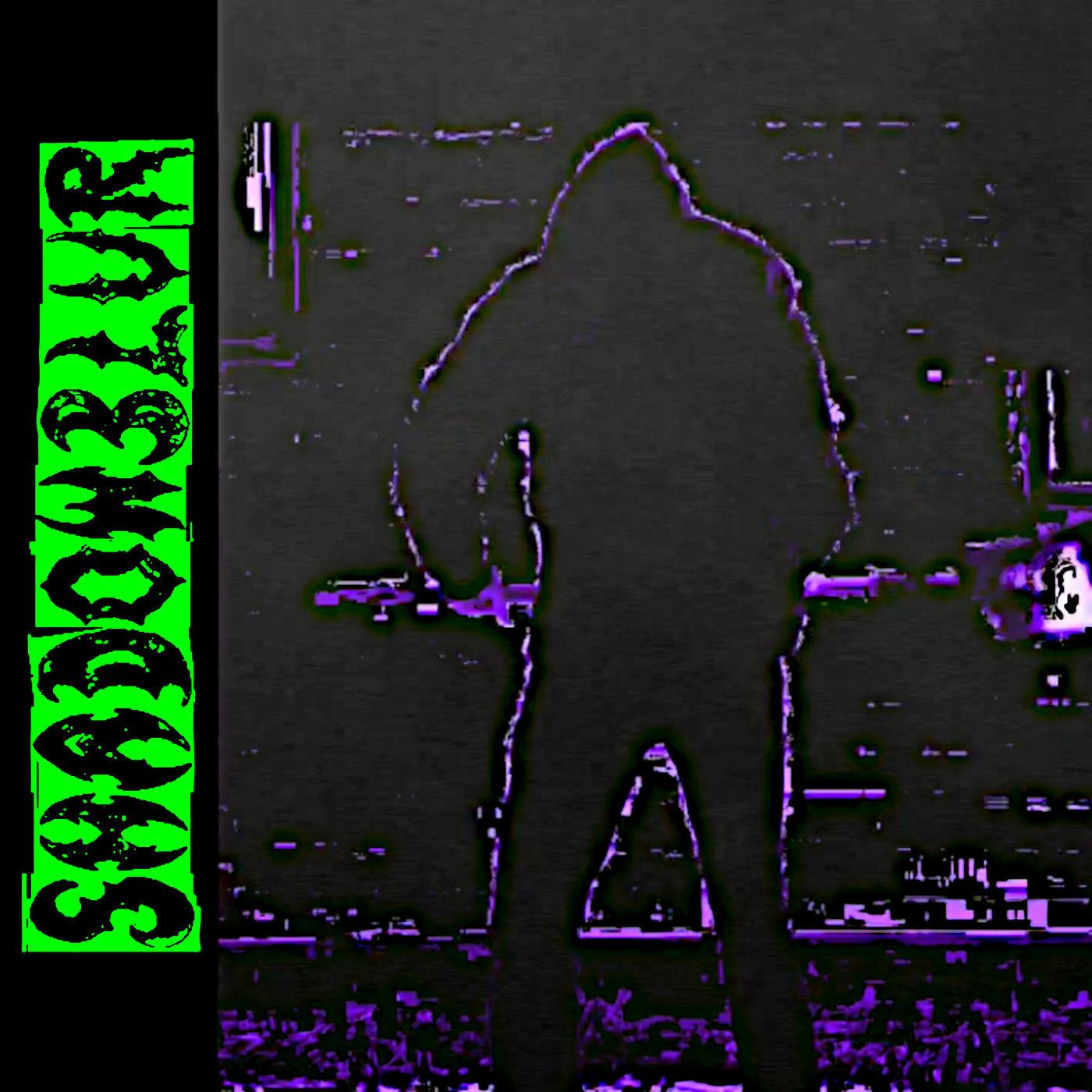 Shadowblur - Purge In The Shadows