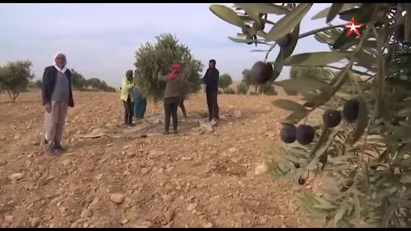Уцелевшие в северной Сирии арабы всяко рады сирийскому правительству и российским патрулям