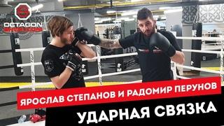 Ярослав Степанов и Радомир Перунов ударная связка