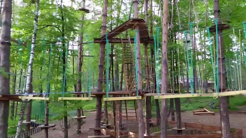 Дети в верёвочном парке Паутина