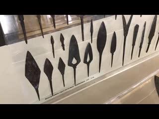 Коллекция музея им. Фелицына пополнилась на полторы тысячи уникальных экспонатов