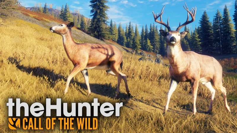 СИМУЛЯТОР ОХОТНИКА ОЗЕРНЫЙ КРАЙ ЛЕЙТОН The Hunter Call of the Wild стрим 42