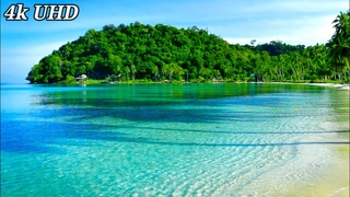 4k UHD Paradise Beach, Nature Sounds. Tropical Beach Waves, Ocean Sounds. White Noise for Sleeping.