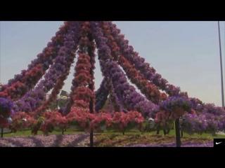НЕЖНАЯ, ЛЕЧЕБНАЯ МУЗЫКА УСПОКОИТ ВАС)) Красота парка цветов в Дубае