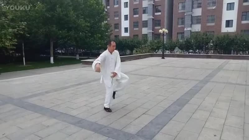 Dong Huiling style Taijiquan Fast fist Grandmaster Wang Qi Fang