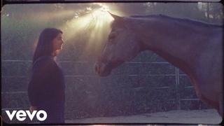 Pete Yorn - Calm Down (Official Video)