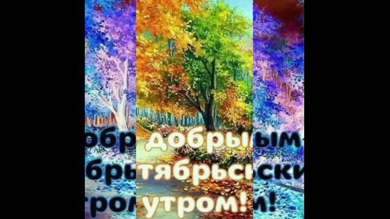 VID_21520514_180645_355.mp4