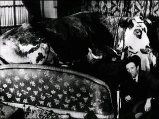 """""""Золотой век"""" //1930, трагикомедия// Луис Бунюэль"""