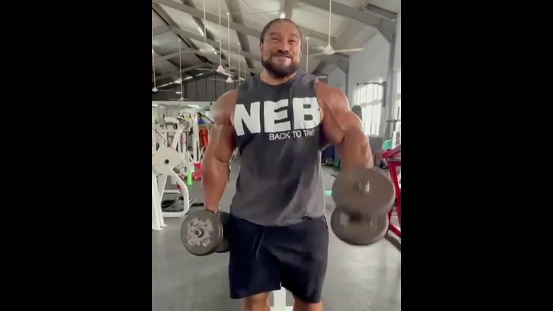 Roelly. Delts.