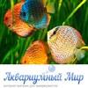 Аквариумный мир-аквариум, живые растения, обзоры