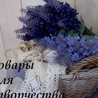 ЕлизаветаСоколова
