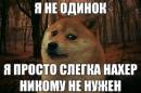 Фотоальбом Ромы Зубова