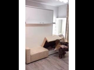 Шкаф кровать диван, 3 в 1, трансформер 'Марко'.mp4