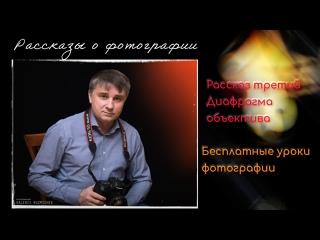 Бесплатные уроки фотографии. Диафрагма объектива