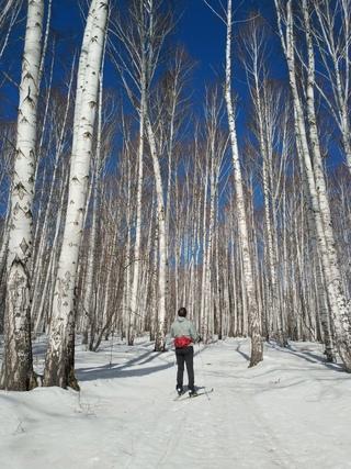 Закрыли лыжный сезон?