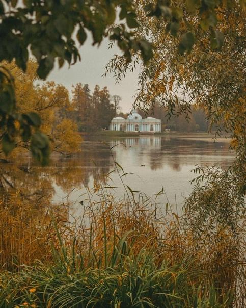 Золотая осень в Екатерининском парке🍂...