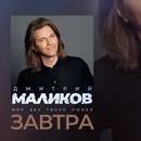 Маликов Дмитрий   Москва   7