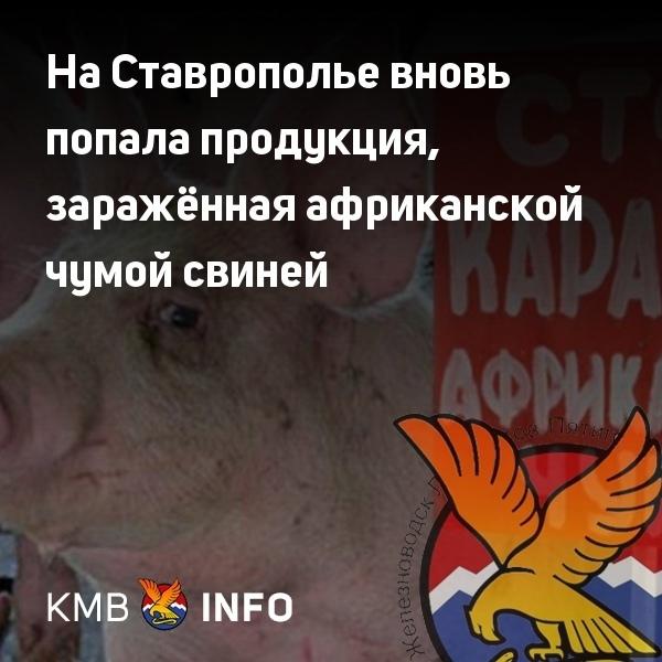 На Ставрополье вновь попала продукция, заражённая ...