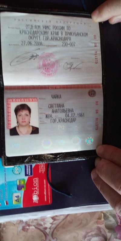 Чайка Светлана, Краснодар