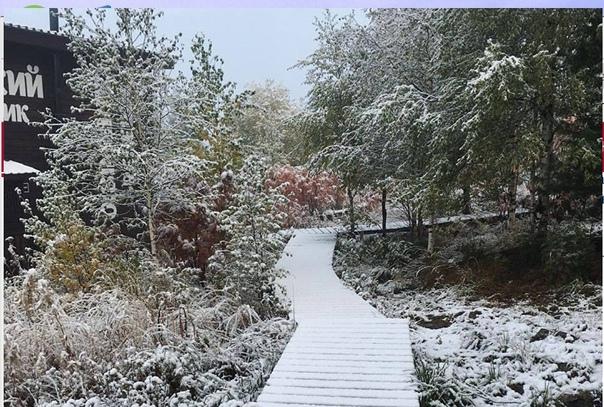 Сегодня ночью, на Урале выпал первый снег. В район...