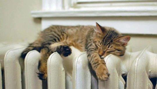 Больше половины жилых домов Сызрани уже с теплом, ...