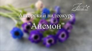 Анемон  ПРОМОролик