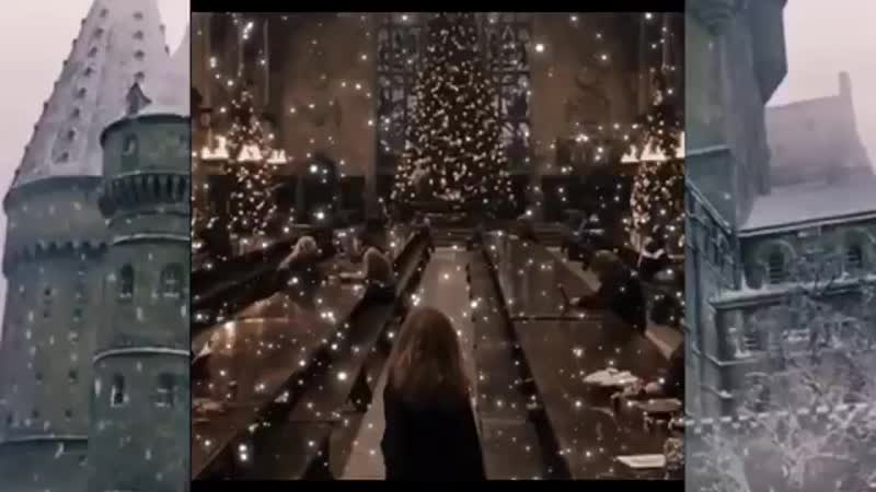 Harry Potter vine