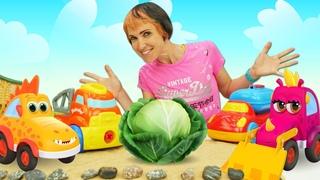 Мультики про машинки. Игры для детей с Капуки Кануки. Сажаем капусту - Веселая школа с Машей