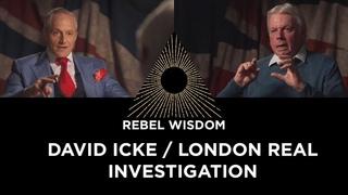 David Icke & London Real, an Investigation