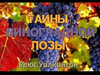 Б.УИЛКИНСОН - ТАЙНЫ ВИНОГРАДНОЙ ЛОЗЫ - 1 ЧАСТЬ