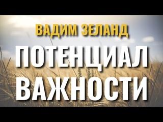 Потенциал важности - Вадим Зеланд