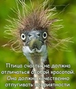 Фотоальбом человека Людмилы Шубиной