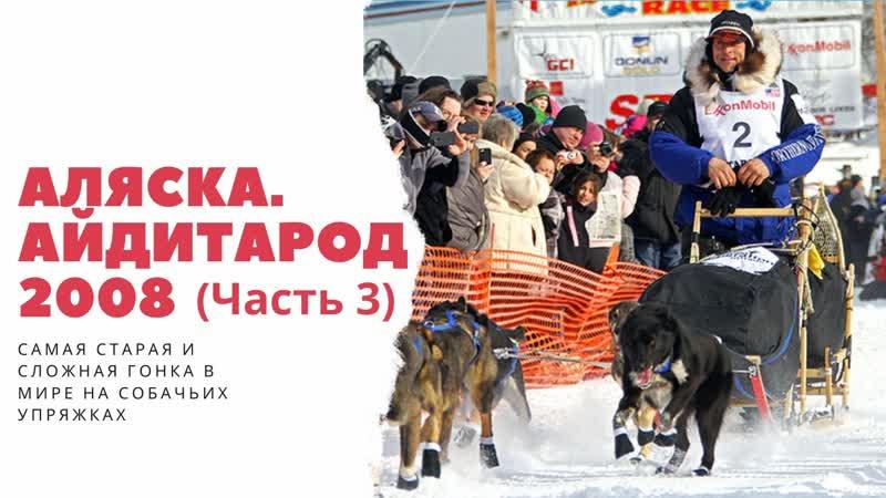 Аляска Айдитарод 2008 Часть 3
