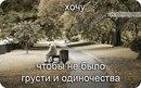 Личный фотоальбом Шохи Рустамова