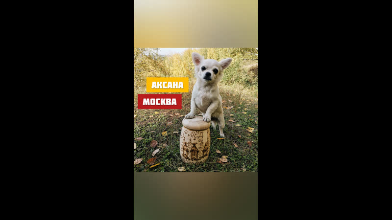 Отзыв от Аксаны из Москвы