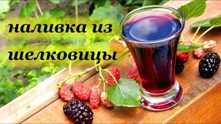 Наливка из шелковицы, вкусный авторский рецепт от Алкофана