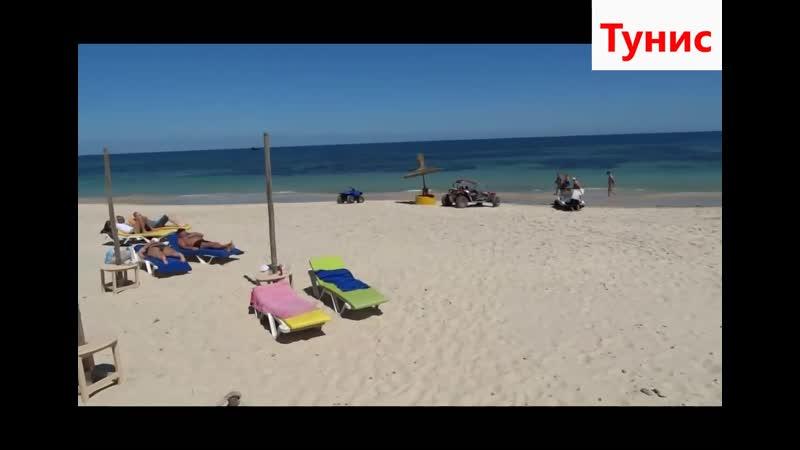 Тунис эта страна вечного лета с разнообразными ландшафтами уникальной флорой и фауной