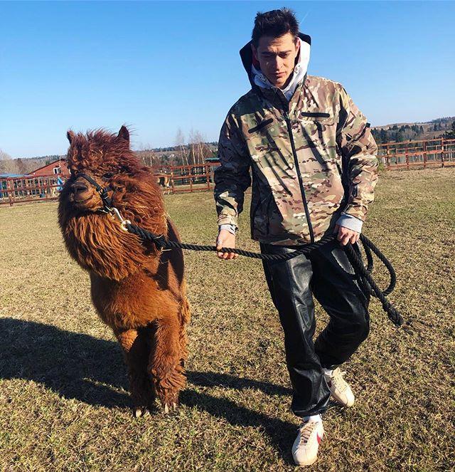 Паша Кравцов: Обожаю гулять на природе с тем кто умеет просто помолчать о жизни 👉🦙👈 // всем солнечного дня 🔥кактака  #альпака