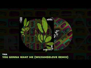 🔊 Tiga - You Gonna Want Me (WilyamDeLove Remix) | Bassmatic Records