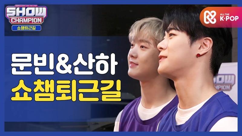 [수고했어, 오늘도] 딴콩이들과 함께하는 쇼챔피언 퇴근길♥ㅣ문빈49328하(MOONBINam
