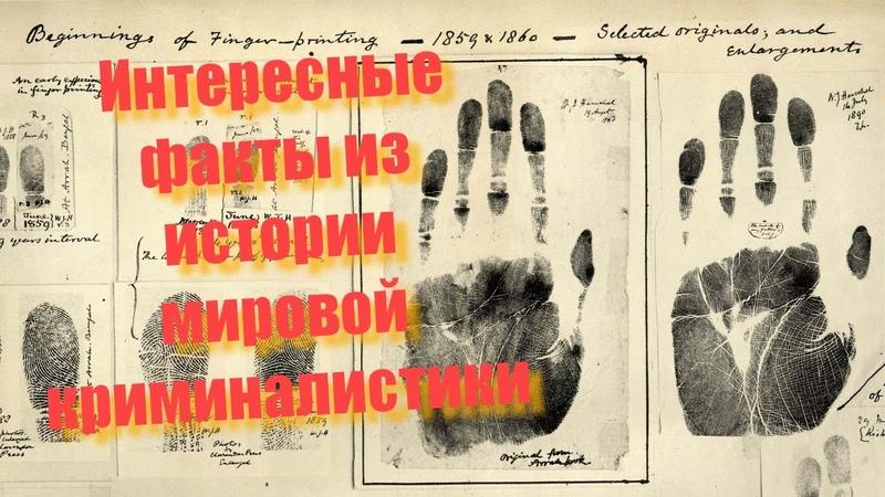 Интересные факты из истории мировой криминалистики