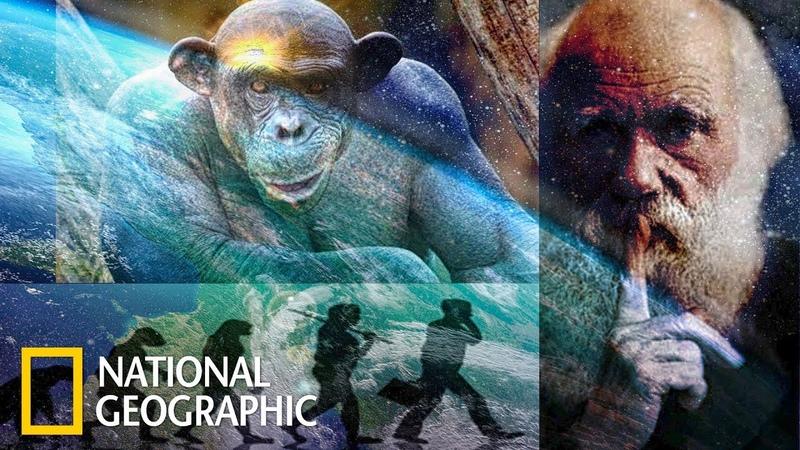 Происхождение Человека С точки зрения науки National Geographic