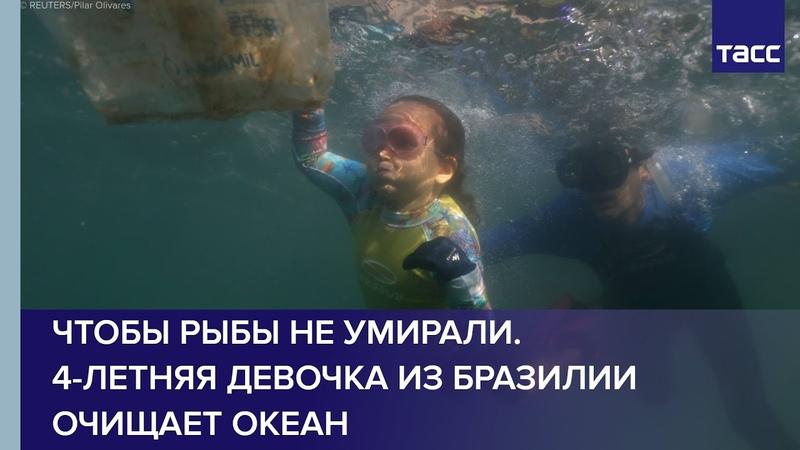 Чтобы рыбы не умирали 4 летняя девочка из Бразилии очищает океан